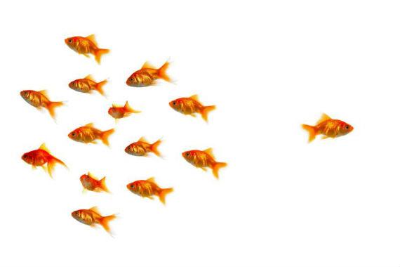 Nem todos os alunos são iguais, e o ensino também não precisa ser. FONTE: Talk act positive