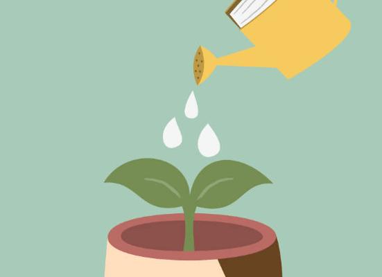 O valor e os efeitos positivos da mentalidade do crescimento