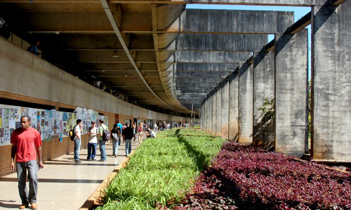 Um olhar sobre a solidificação do ensino superior privado no Brasil