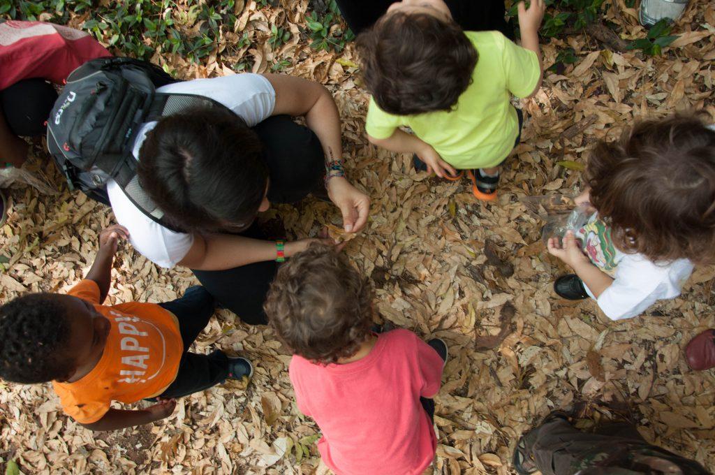 Ser Criança é Natural é uma iniciativa voltada para a facilitação da aprendizagem e conexão com a natureza.